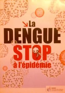 dengue-epidemic-brochure